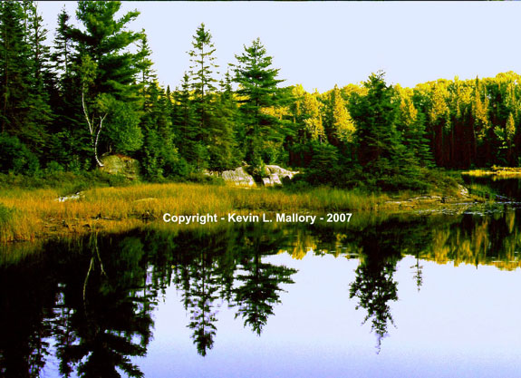 15 - Peaceful Reflections - Algonquin Park, Ont
