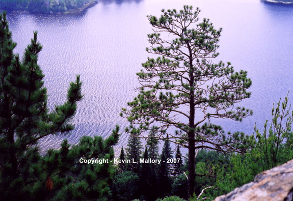 18 - View of Whitefish Lake from Centennial Ridges - Agonquin Park, Ont