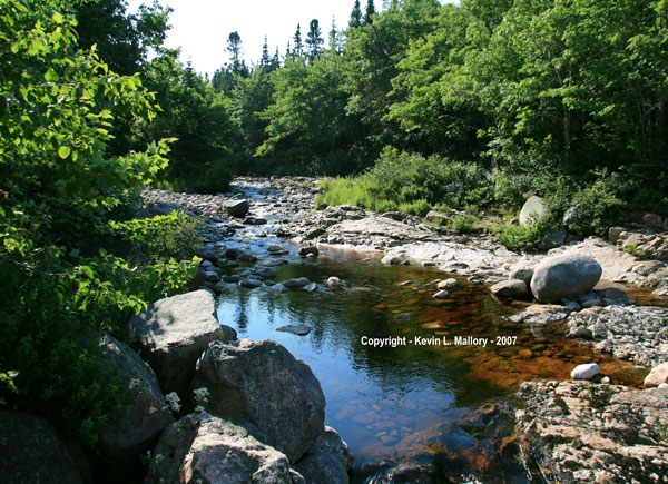 17 - Forest River & Rocky Shore - Margaree Valley -  Cape Breton