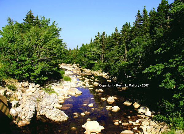 18 - The Beauty of the Margaree Valley Wilderness - Cape Breton