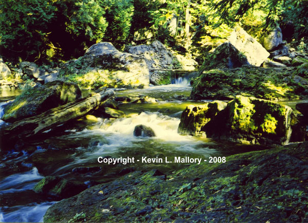 45 - Brilliant Light on the Sydenham River - near Owen Sound, Bruce Peninsula, Ont